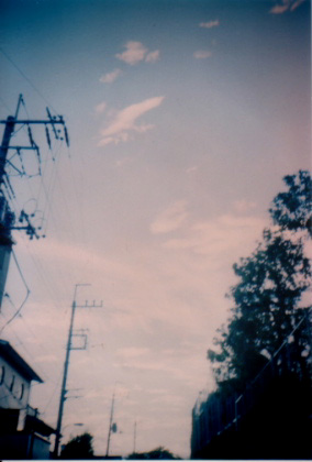 20050405.jpg