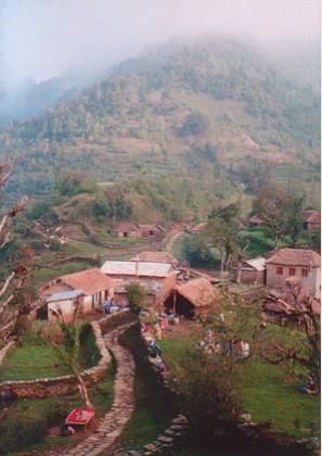 20050118.jpg